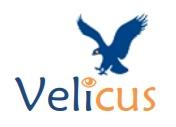 Logo Velicus